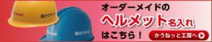 named_helmet